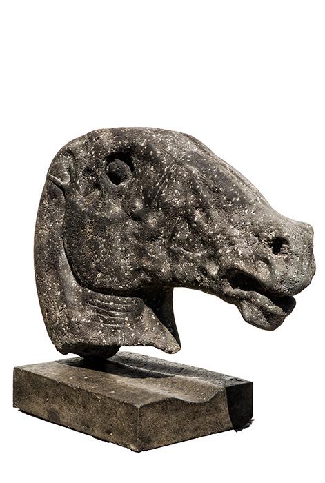 2016 - Pietra Lavica d'Ischia - Testa di Cavallo - 70x80
